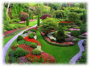 well-watered garden
